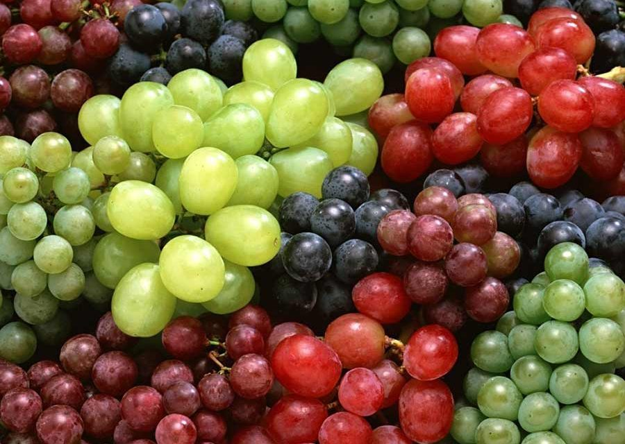 Flavonoids and Allergies