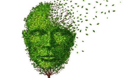 Depression, Dementia and Vitamin B12
