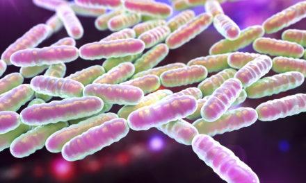 Many Health Benefits of Probiotics