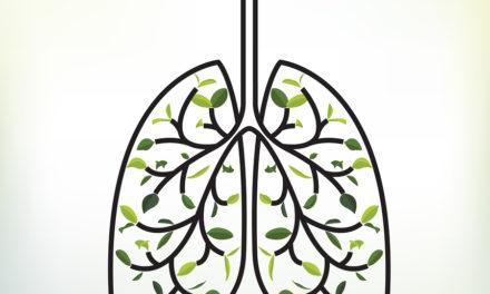 Dietary Fiber Helps Prevent Lung Disease