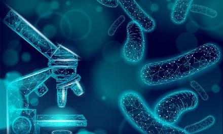 Probiotics and the Immune System